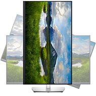"""31.5"""" Dell P3221D - LCD monitor"""