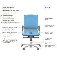 3DE Asana Steel černá - Kancelářská židle