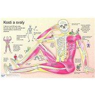 Jak funguje lidské tělo - Kniha