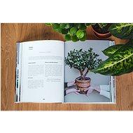 Kvítka v bytě - Kniha