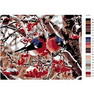 Malování podle čísel - Ptáčci v jeřabinách 40x50 cm vypnuté plátno na rám - Malování podle čísel