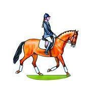 Koně a koníčci - Kreativní hračka