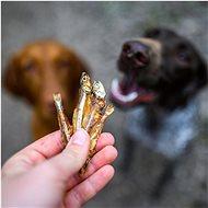Akinu tréninkové rybičky 75 g - Pamlsky pro psy