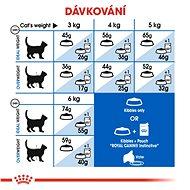Royal Canin Indoor 10 kg - Granule pro kočky