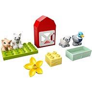 LEGO DUPLO Town 10949 Zvířátka z farmy - LEGO stavebnice