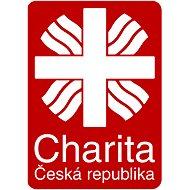 Farní charita Česká Lípa - Vybavení azylového domu pro maminky s dětmi - Charitativní projekt