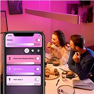 Philips Hue White and Color Ambiance Ensis 40903/31/P9 - Lustr