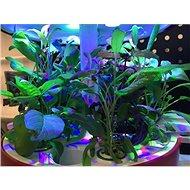 Plantui Zásobník rozšířený (12 pozic) pro Plantui 6 - Zásobník