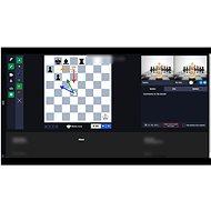 Šachový on-line kurz pro začátečníky a mírně pokročilé s juniorským mistrem ČR - Voucher: