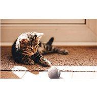 Cheerble Wicked Ball pro kočky - Míček pro kočky