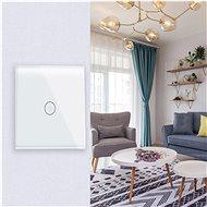 iQtech SmartLife IQS001, Wi-Fi vypínač jednoduchý - Vypínač