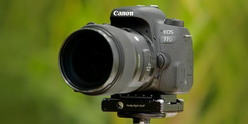 Canon EOS 77D (RECENZE)