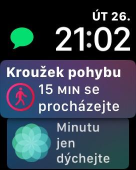 Apple Watch 3 GPS, screenshot, ciferník