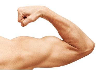 Biceps a triceps