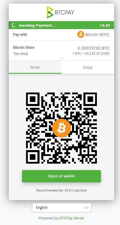 che ospita bitcoin pagamento)