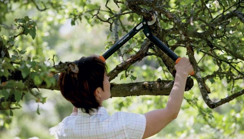 Nůžky na větve Gardena
