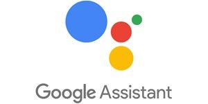 https://cdn.alza.cz/Foto/ImgGalery/Image/Article/google-assistant-v-cestine.jpg