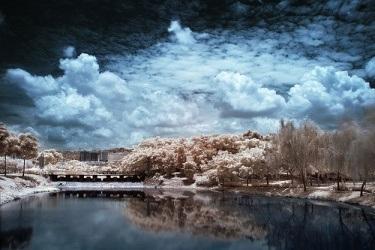 Snímek pořízený přes infra filtr