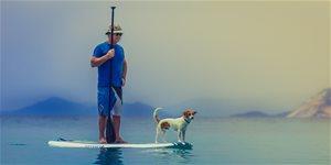 https://cdn.alza.cz/Foto/ImgGalery/Image/Article/paddleboardy-jak-zacit.jpg