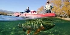 https://cdn.alza.cz/Foto/ImgGalery/Image/Article/rybareni-clun-ryba-jezero-nahled.jpg
