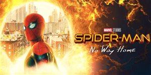 https://cdn.alza.cz/Foto/ImgGalery/Image/Article/spider-man-no-way-home-logo.jpg