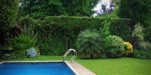 https://cdn.alza.cz/Foto/ImgGalery/Image/Article/swimming-pool-1224450.jpg