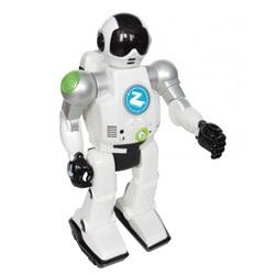 Robot Made Zigy