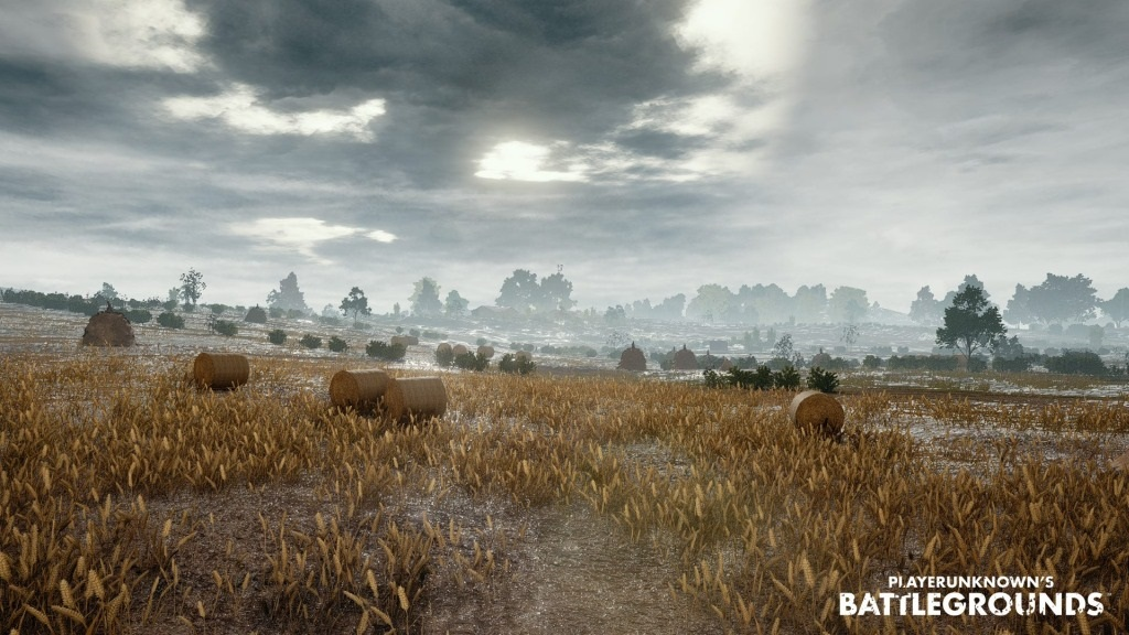 PlayerUnknown's Battlegrounds; Wallpaper: pole, bojiště