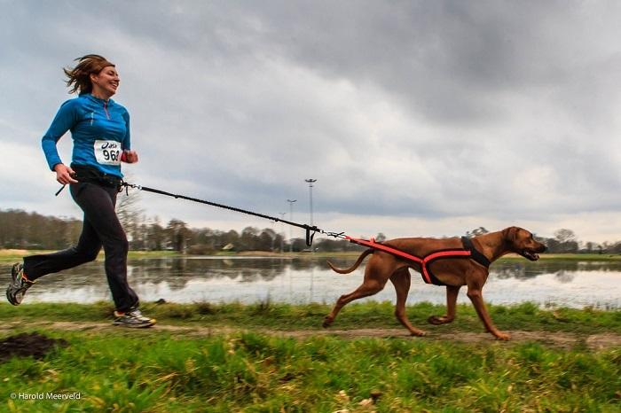 Běžkyně se psem