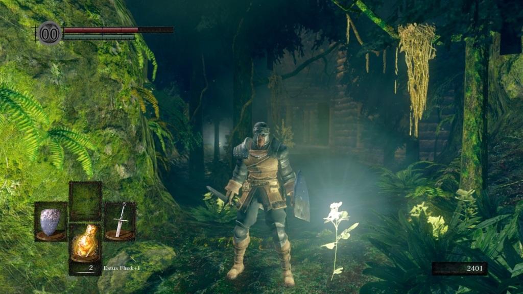 Dark Souls: Remastered; gameplay: zahrada