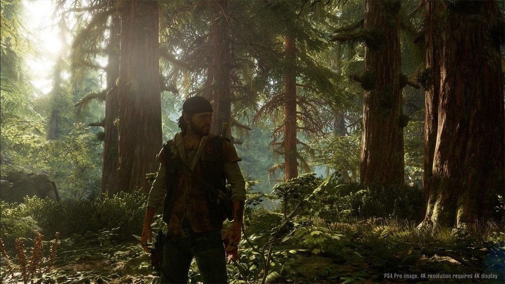 Days Gone; screenshot: les
