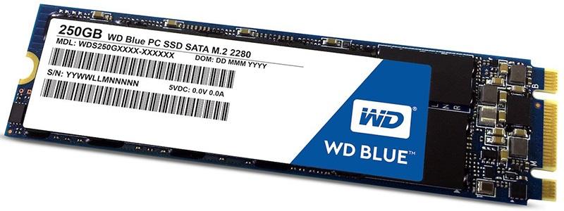 M.2 SSD WD
