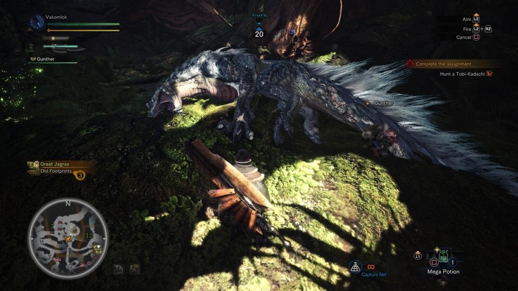 Monster Hunter: World; Gameplay: tobi kadachi