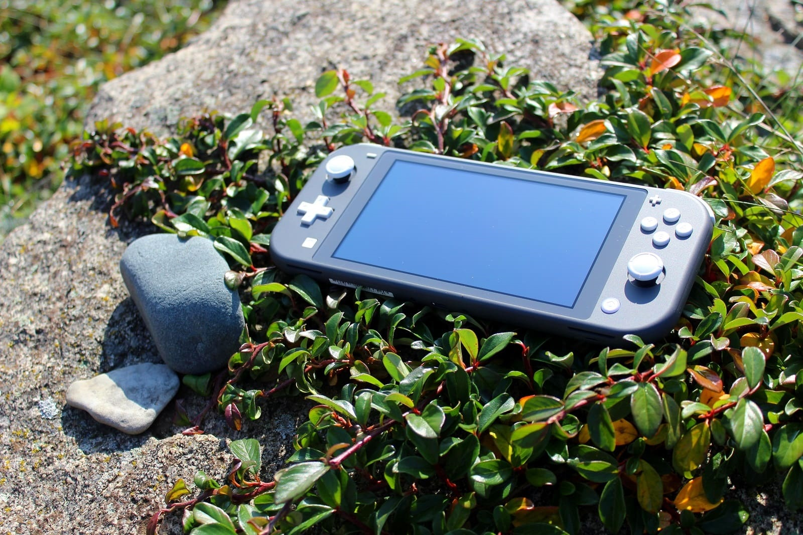Switch Lite; screenshot: handheld