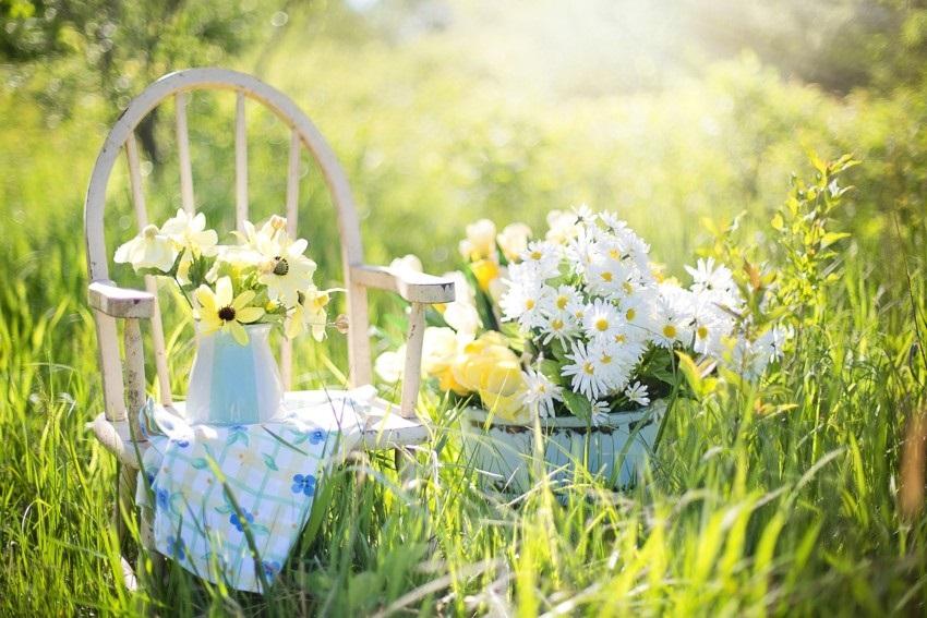 Provence styl do vaší zahrady