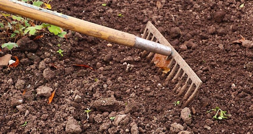 Říjen na zahradě