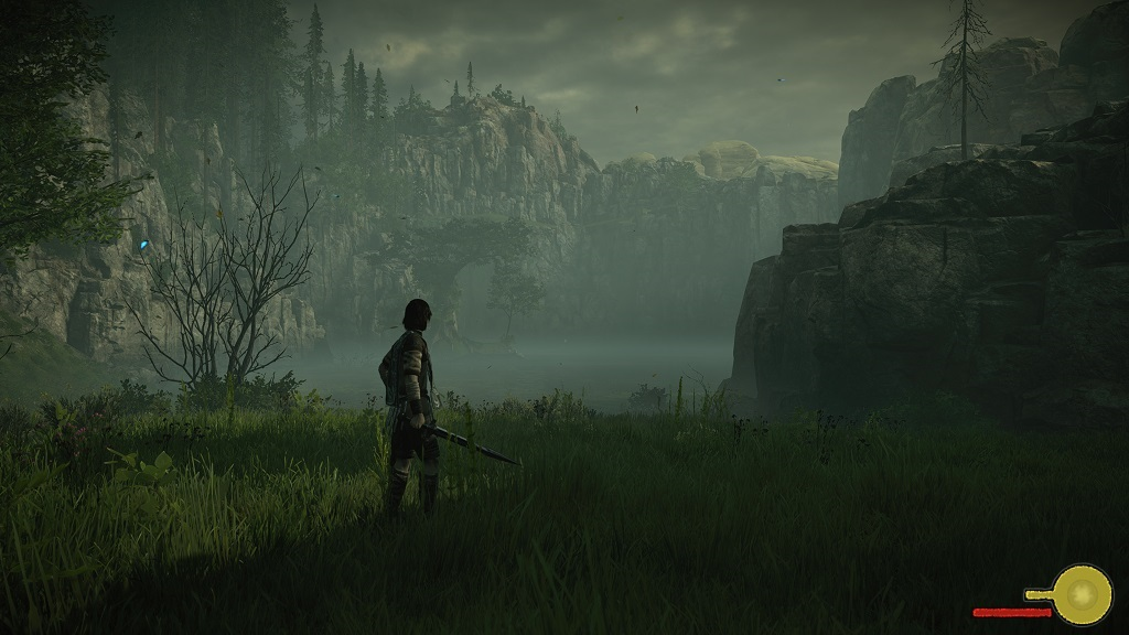 Shadow of the Colossus; Gameplay: jezero