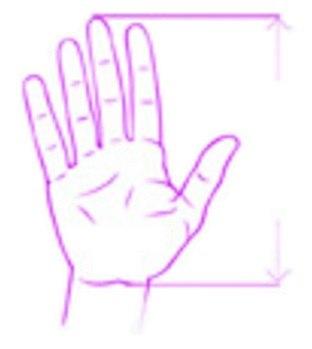 Správná velikost myši; ruka