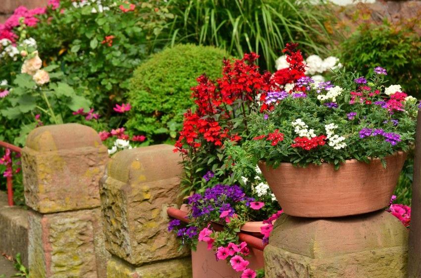 c0f71f7d8b6 Péče o trávník a zahradu (TIPY A TRIKY)