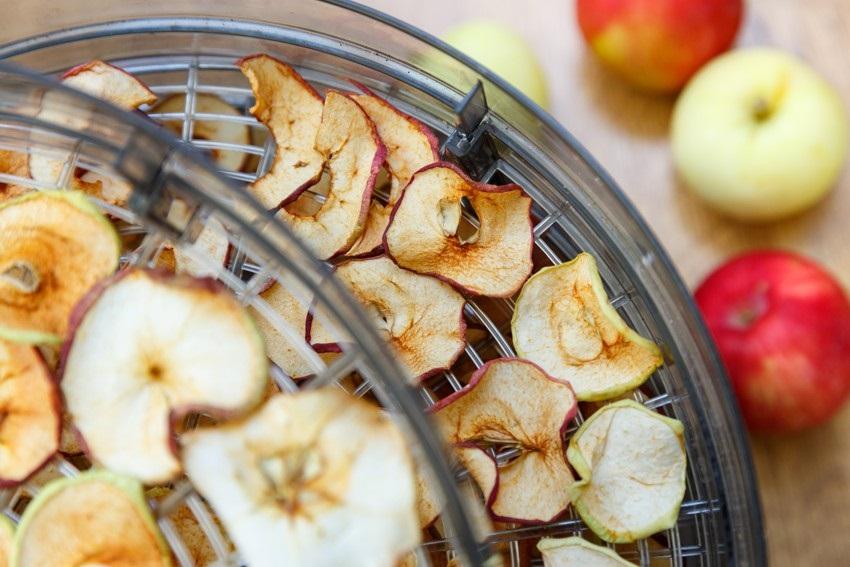 Sušení jablek pomocí sušičky