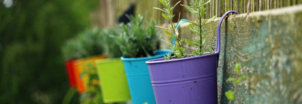 Jak zvelebit zahradu