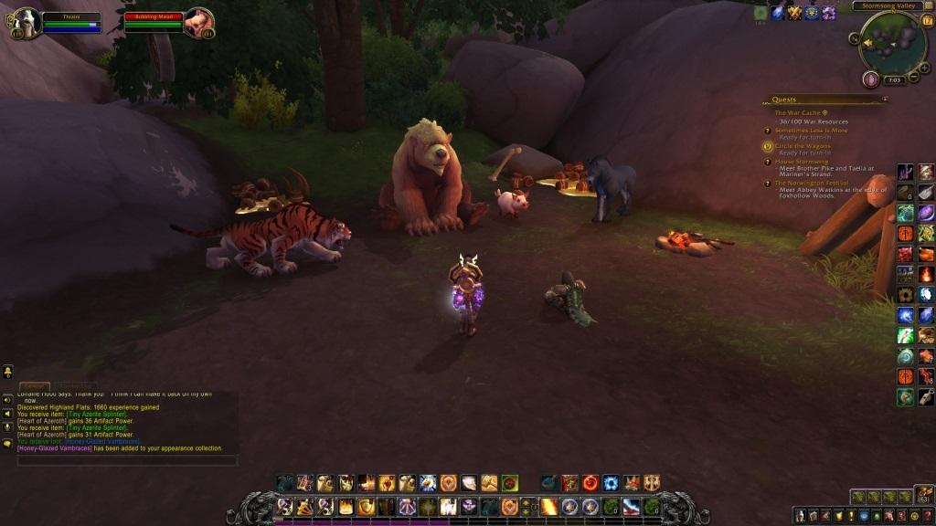 World of Warcraft: Battle for Azeroth; gameplay: medvěd