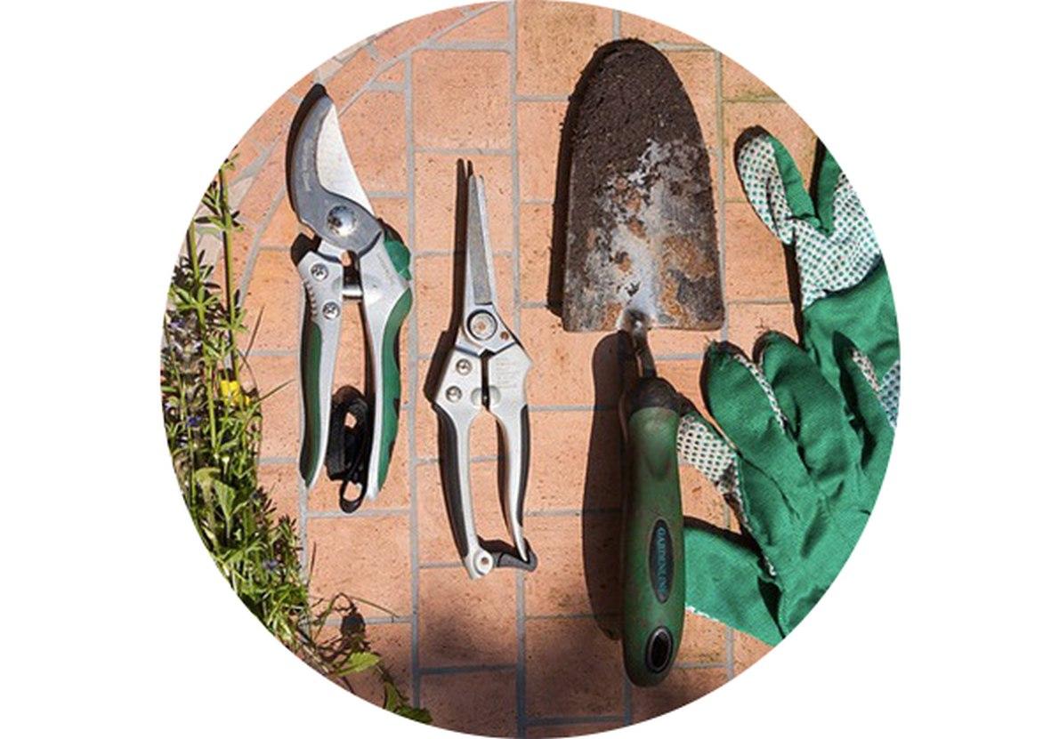 Zahradní kalendář: Květen na zahradě