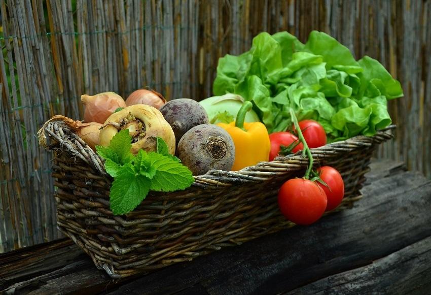 Zelenina v srpnu