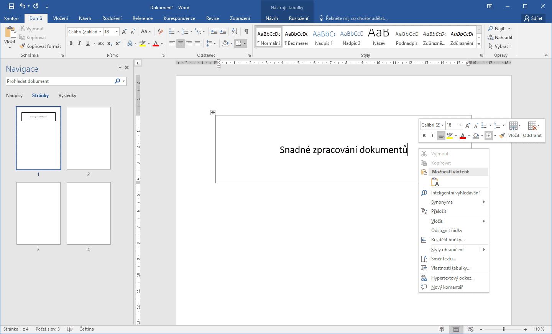 Rozhraní programu Microsoft Word