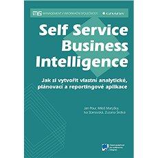 Self Service Business Intelligence - Jan Pour