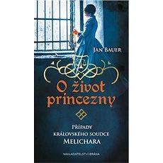 O život princezny: Případy královského soudce Melichara - Kniha
