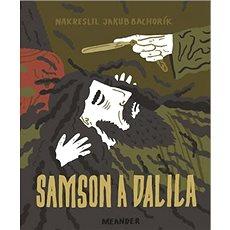 Samson a Dalila - Kniha