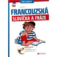 Francouzská slovíčka a fráze: pro lenochy - Kniha