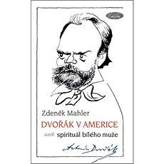 Dvořák v Americe: aneb spirituál bílého muže - Kniha